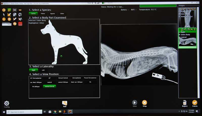 Randolph Animal Hospital Asheboro NC - Diagnostic Results