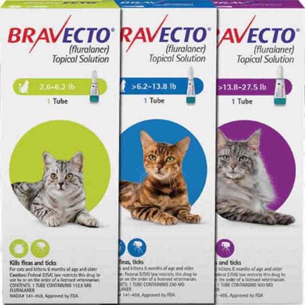 Bravecto Cats